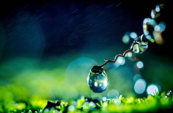 晶莹剔透的水珠