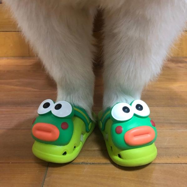 好可爱的鞋子